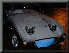 Simon Pages frogeye sticks its tongue out at the snow